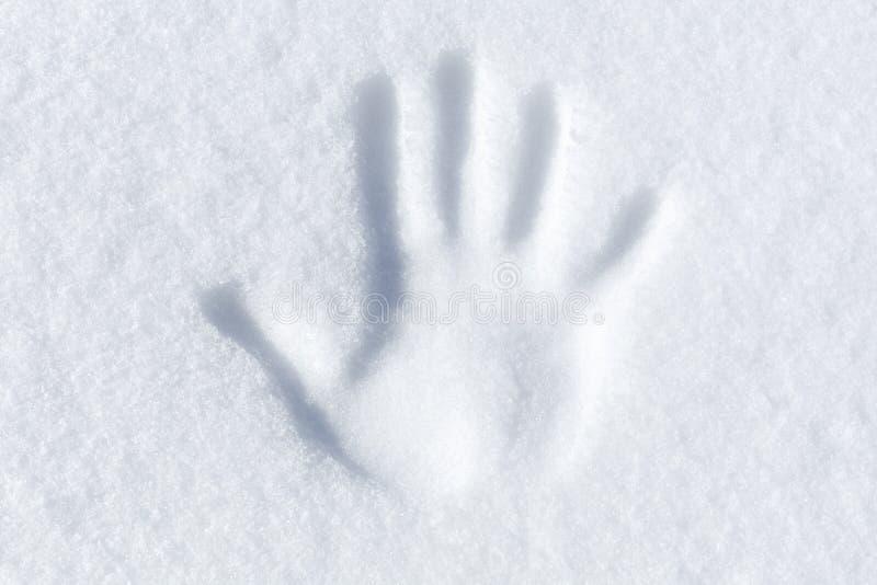 Gömma i handflatan trycket i ny vit snö arkivfoto