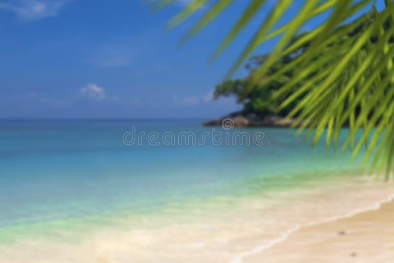 Gör suddig den härliga naturgräsplanpalmbladet på den tropiska stranden med bakgrund för abstrakt begrepp för den ljusa vågen för arkivbilder