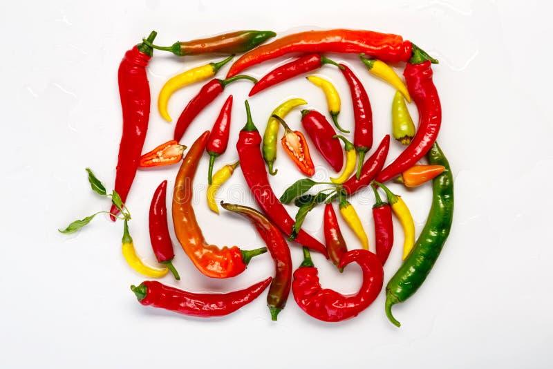 Göra grön, för guling och för den röda chili peppar som isoleras på vit bakgrund arkivbilder