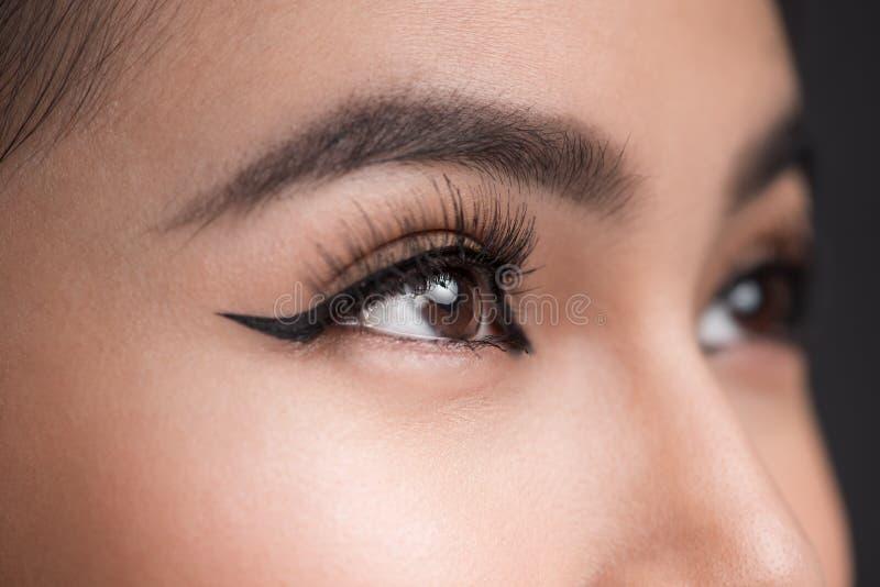 Göra perfekt form av ögonbryn Härligt makroskott av kvinnliga ögonwi royaltyfri foto