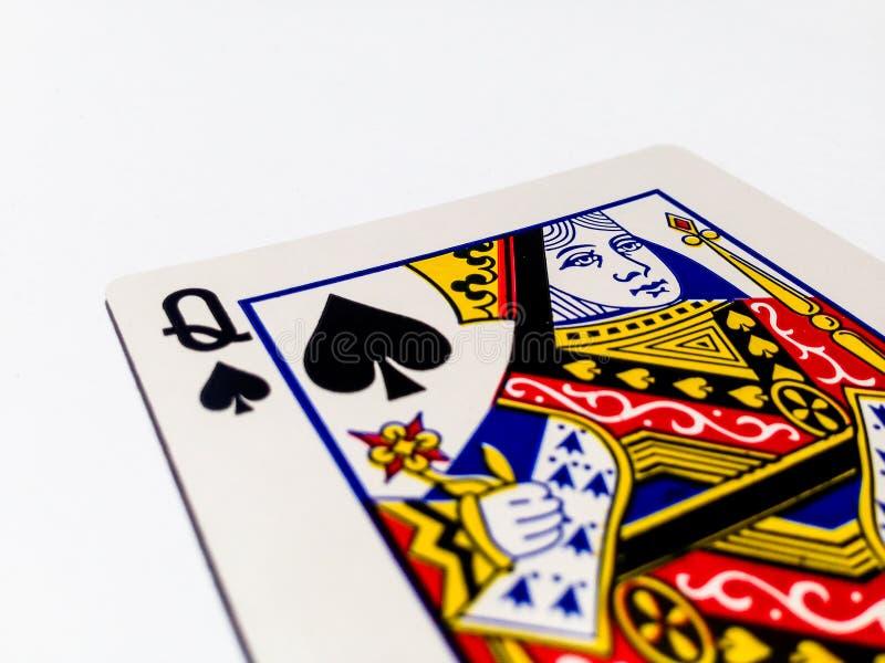 Göra till drottning det pik-/spadekortet med vit bakgrund royaltyfri bild