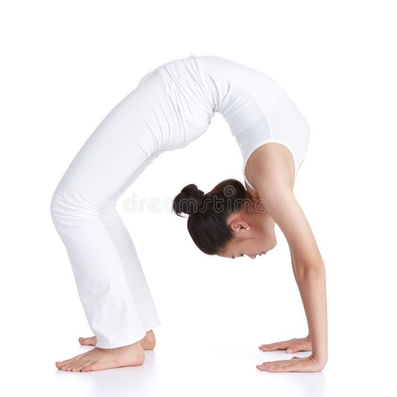 göra yoga royaltyfri foto