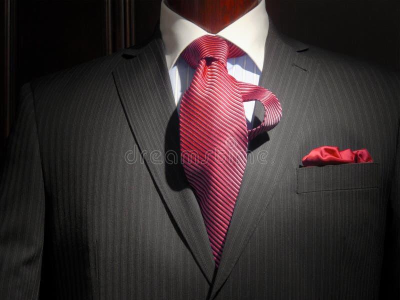 görad randig tie för omslag red arkivbild