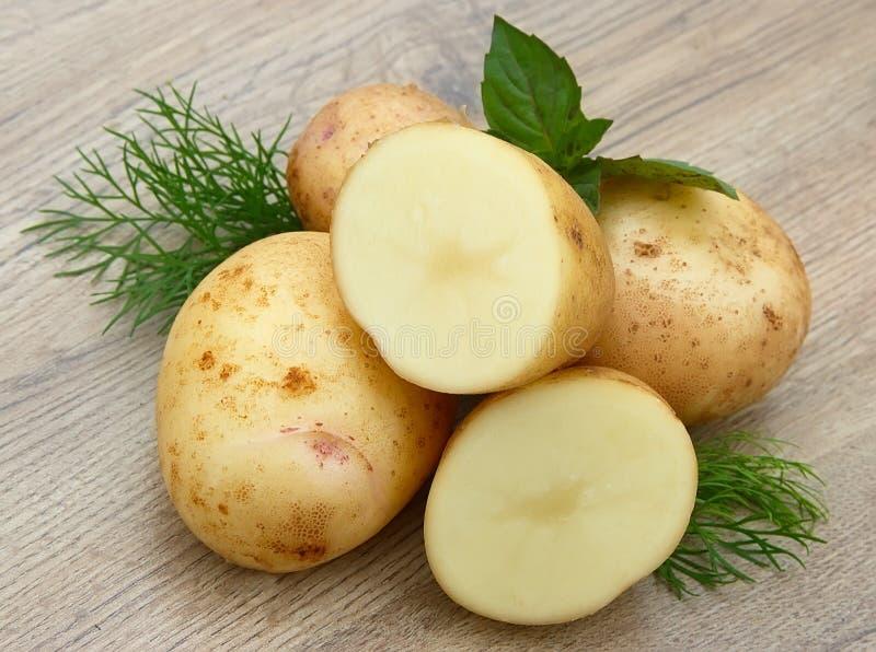 görar grön potatisbarn fotografering för bildbyråer