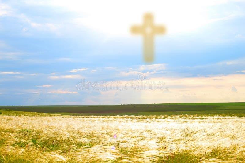 Göttliche Leuchte vom Himmel stockfotos