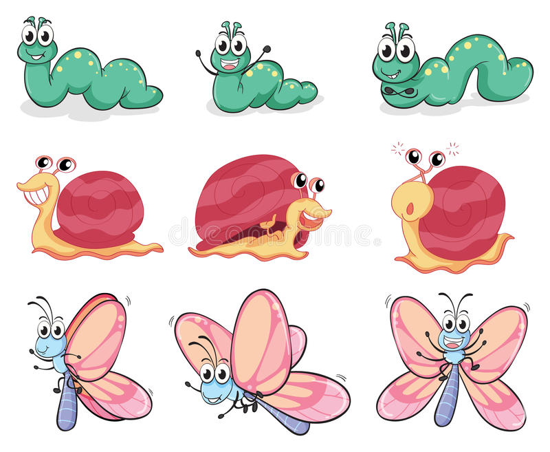 Gąsienica, motyl i ślimaczek, royalty ilustracja