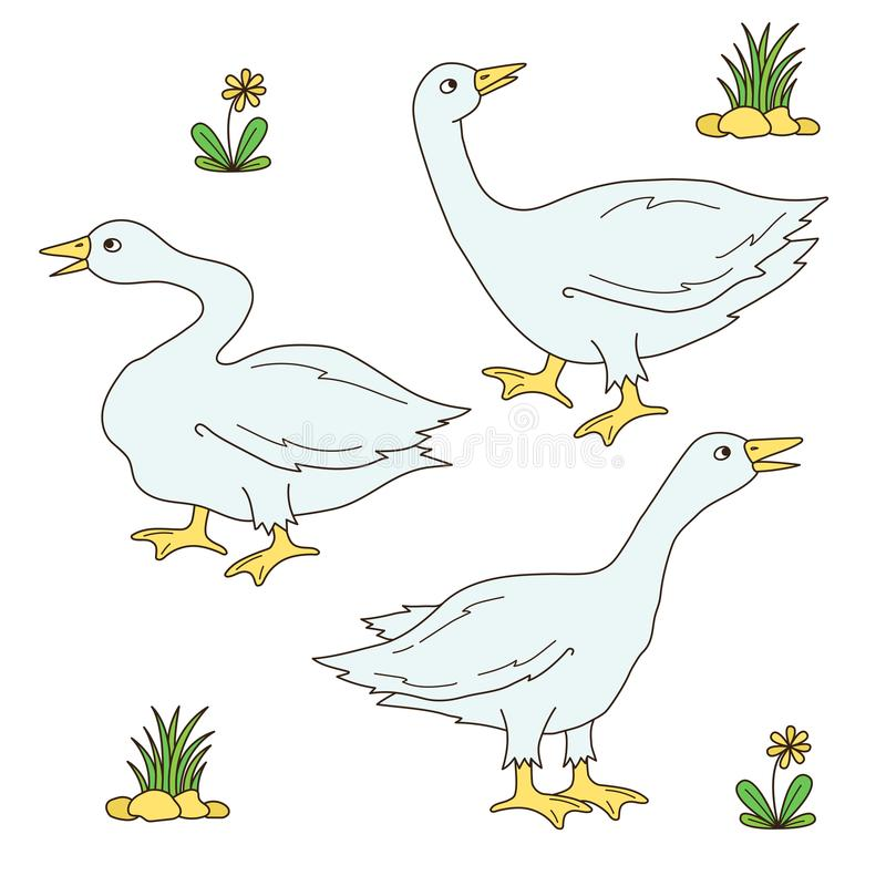 Gęsi gąsiora gospodarstwa rolnego ptaków ikon wektoru set ilustracji