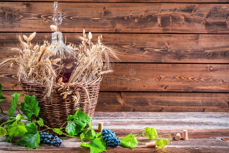 Gęsiorek czerwone wino w lochu fotografia stock