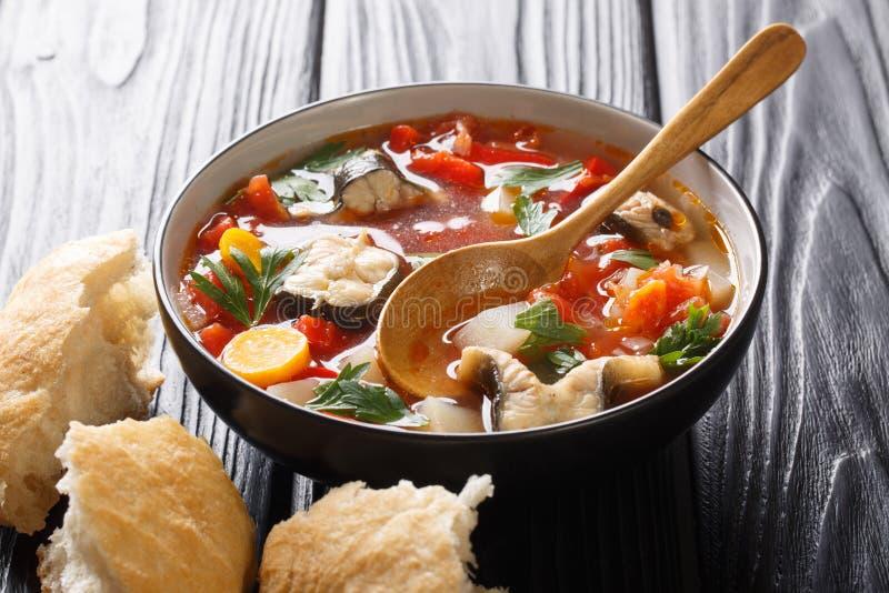 Gęsta pomidor ryby polewka z węgorzem i warzywa zbliżeniem w pucharze słuzyć z chlebem horyzontalny obrazy royalty free