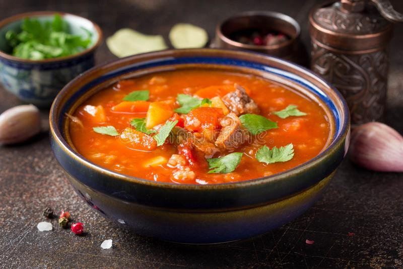Gęsta pomidorowa polewka z mięsem, zbożami i warzywami, Tradycyjna Orientalna kuchnia, korzenny gulasz z, ryż i pikantność, wołow zdjęcie royalty free