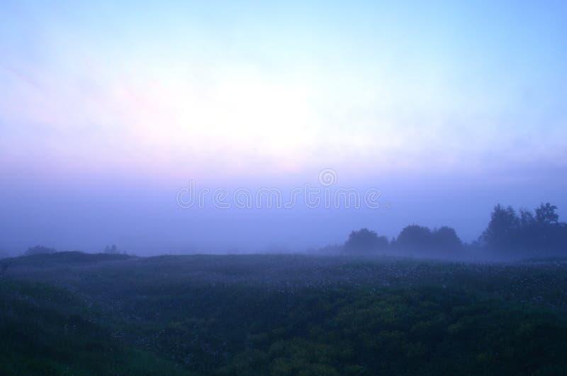 Gęste lato ranku mgły fotografia stock