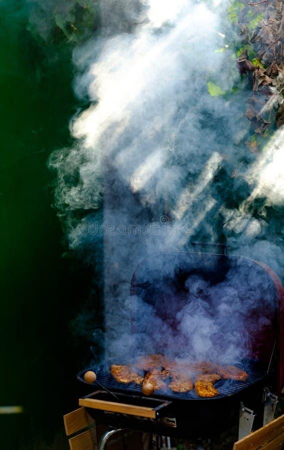 Gęsty dym nad wieprzowina grillem zdjęcia stock