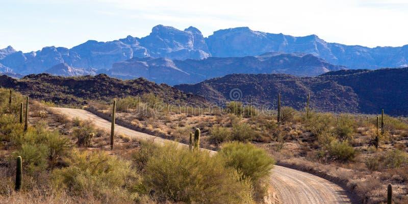 Główna droga przez Organowej drymby Kaktusowego Krajowego zabytku w południowym Arizona zdjęcia royalty free