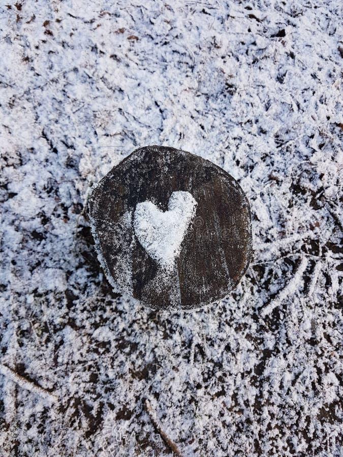 głębii śródpolny serca płycizny śnieg fotografia royalty free