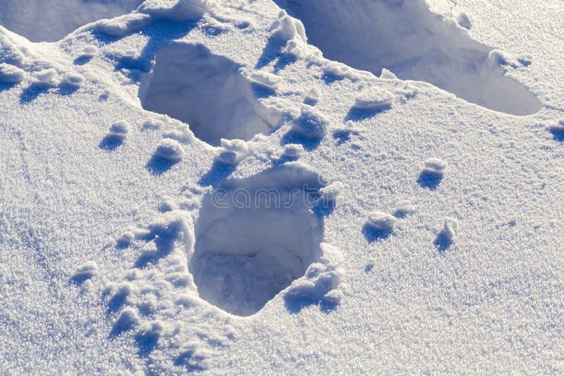 Głębocy śniegów dryfy obrazy stock