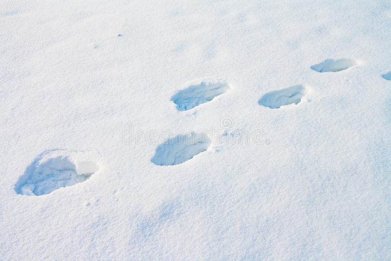 Głębocy ludzcy odciski stopy w śniegu fotografia royalty free