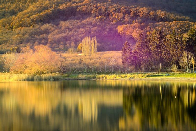 Głęboka jesień zdjęcie royalty free