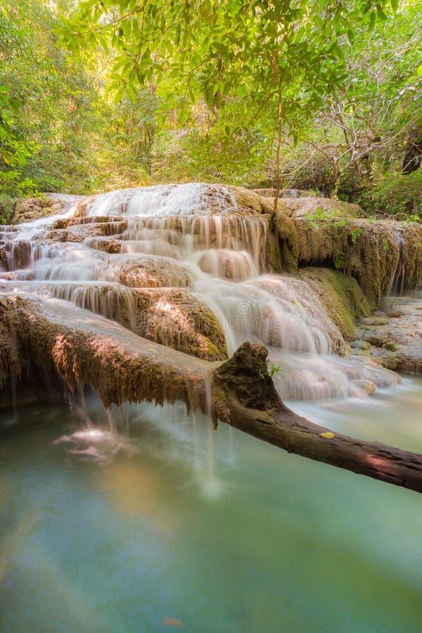 Głęboka las woda spada w parku narodowym Tajlandia zdjęcie royalty free