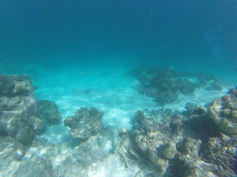 głęboki błękitny cristal whater zdjęcie stock
