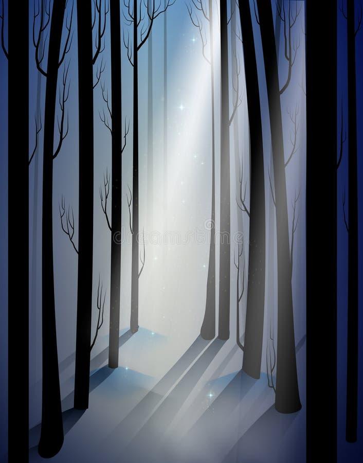Głęboki czarodziejski mroźny zima las z tajemnica lekkim promieniem, cienie, czarodziejscy zim drewna, ilustracji