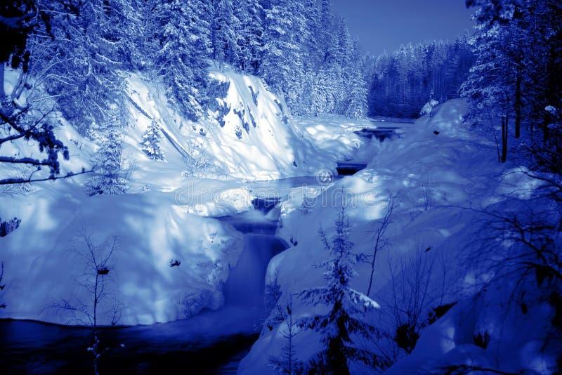głęboki końcówka wieczór lasu jezioro obraz royalty free