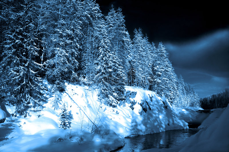 głęboki końcówka wieczór lasu jezioro zdjęcia royalty free