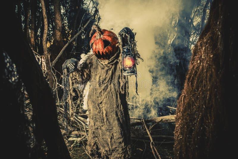 Głęboki lasowy strach zdjęcia stock
