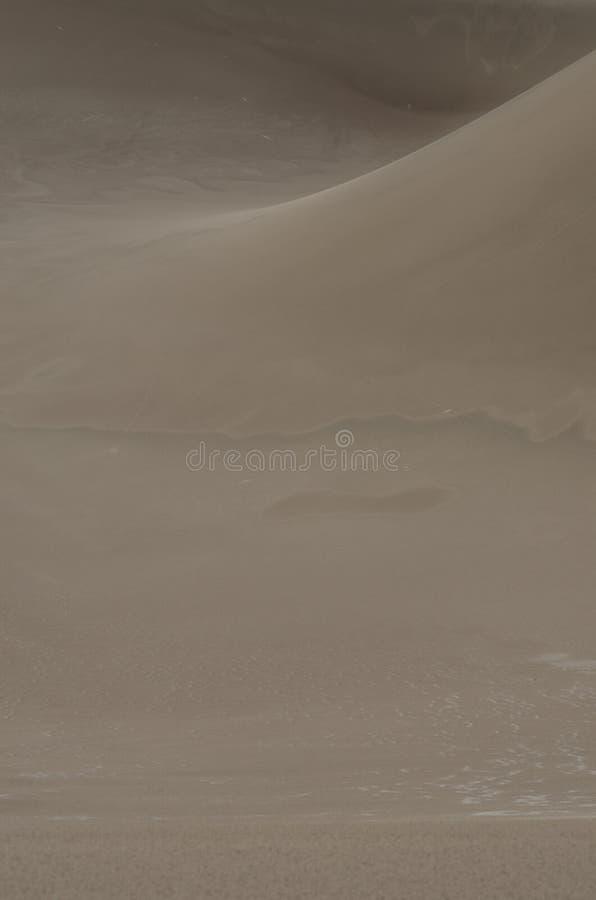 Gładzi krzywę piasek diuny Pionowo zdjęcia royalty free