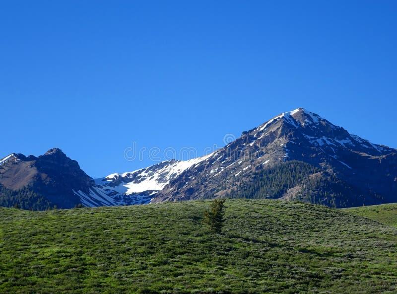 Głaz góry - Idaho zdjęcie stock