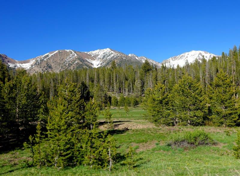 Głaz góry - Idaho obrazy stock