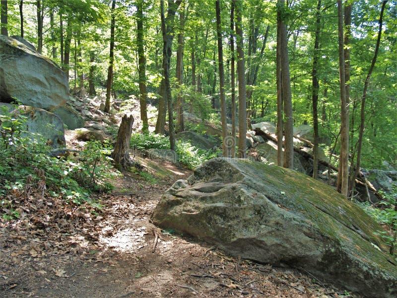 Głazy przy Kamiennym Halnym stanu parkiem zdjęcie royalty free