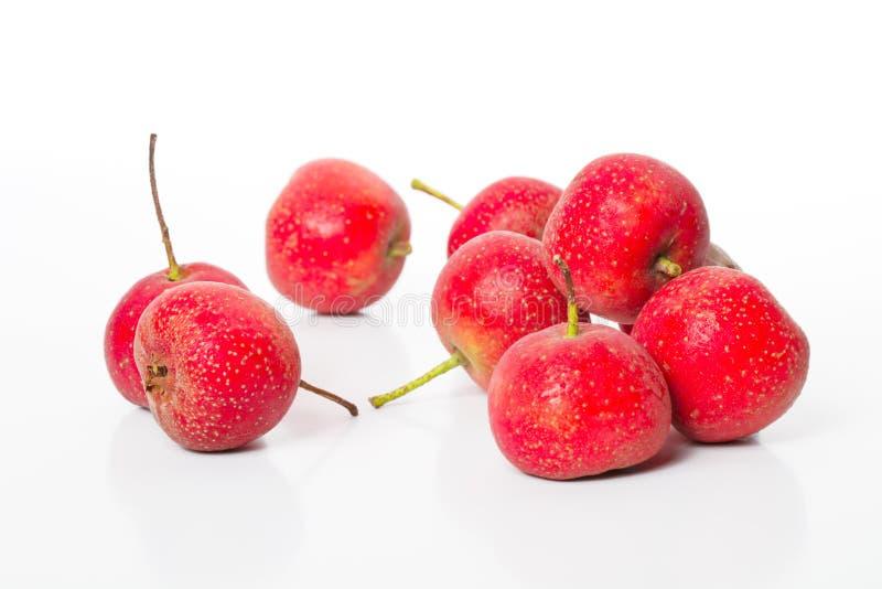 głogowej 2 owoc zdjęcia stock