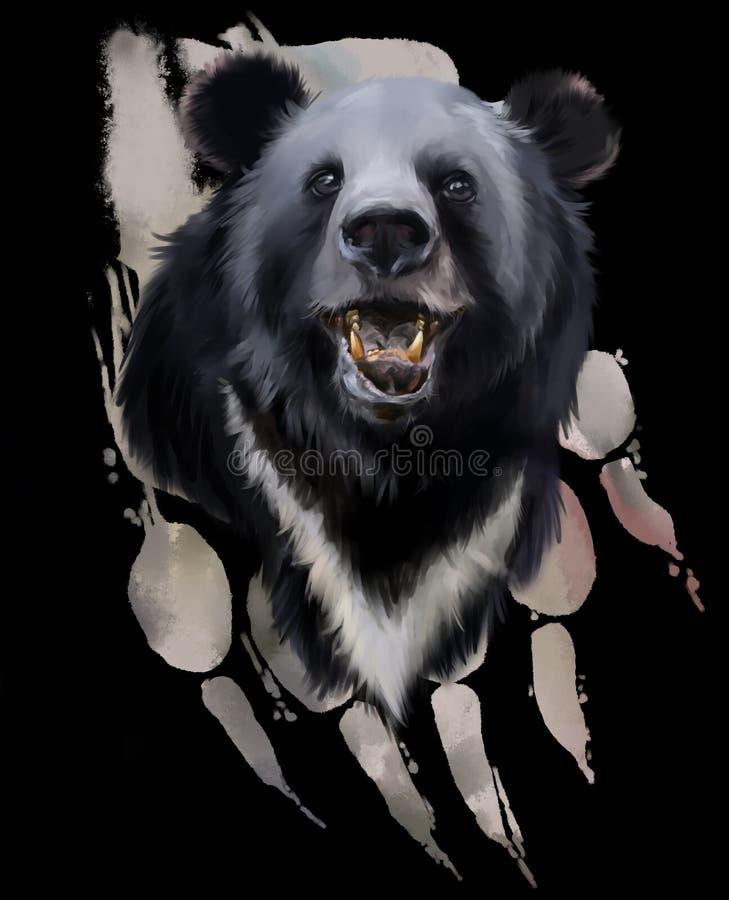 Głowa czarny niedźwiedź ilustracji