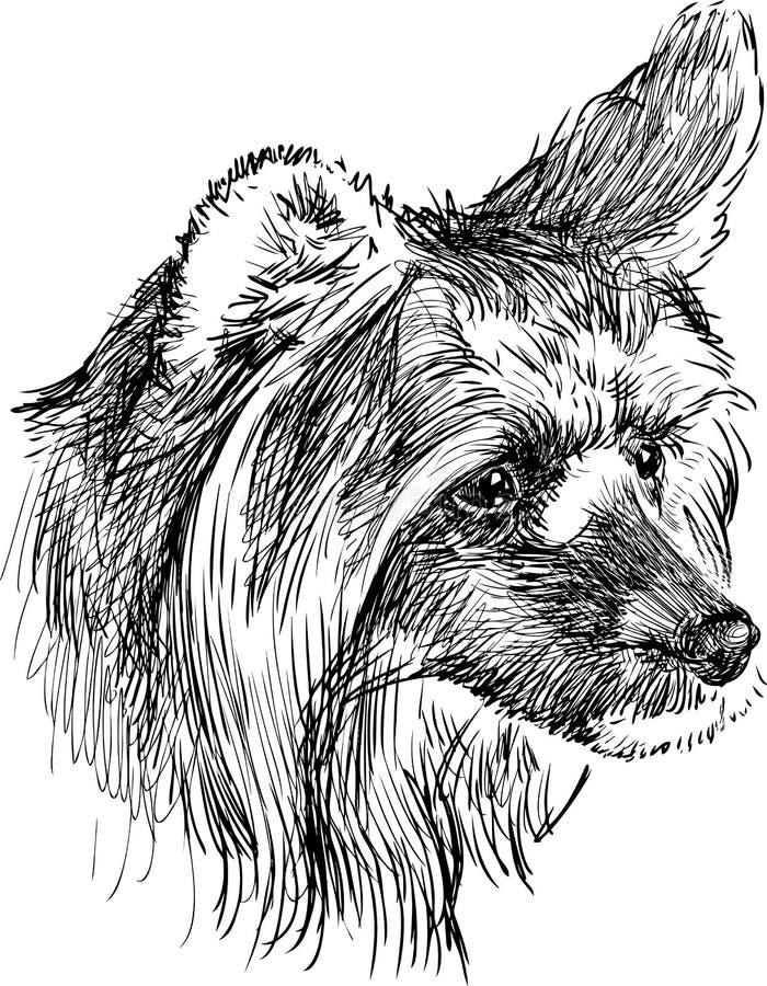 Głowa kostrzewiasty pies royalty ilustracja