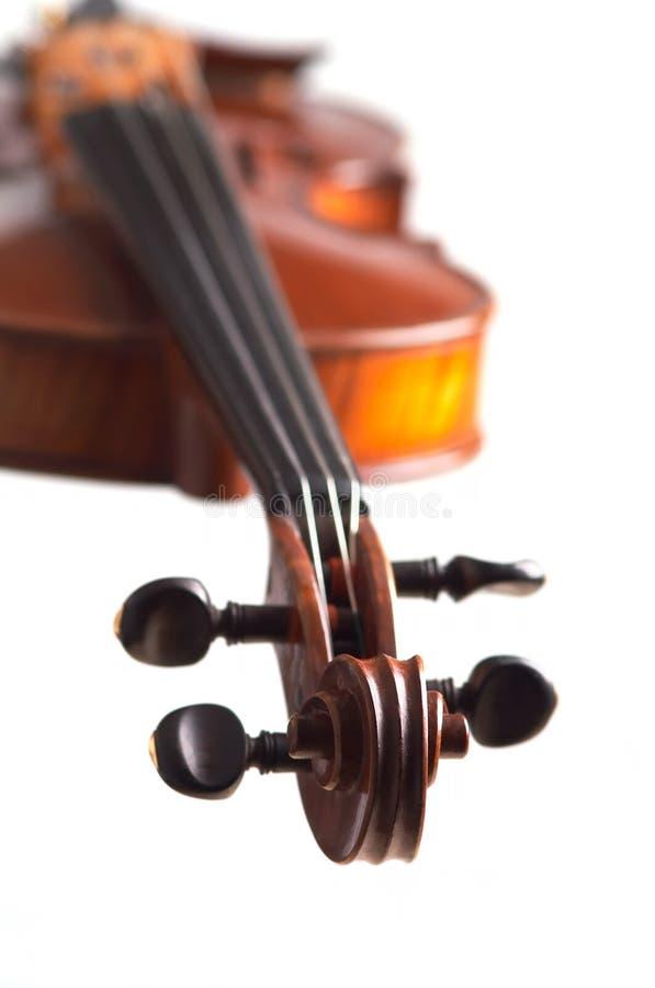 głowa skrzypce. zdjęcie stock