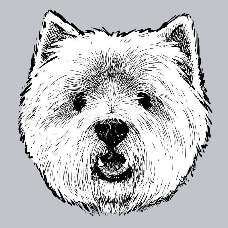 głowa Szkocki terier royalty ilustracja