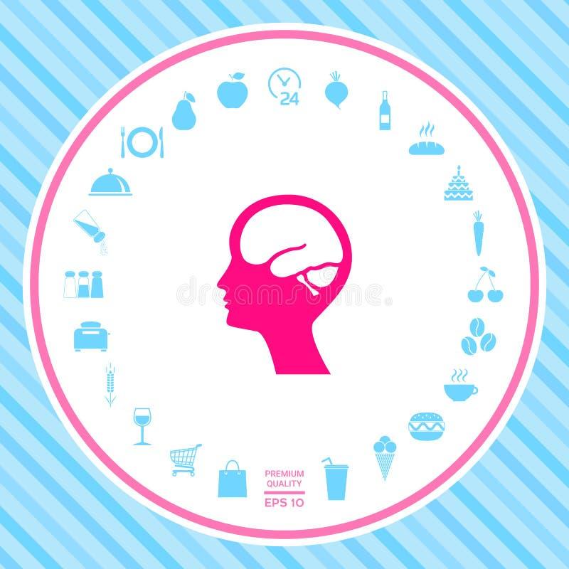 Głowa z móżdżkową symbol ikoną ilustracji