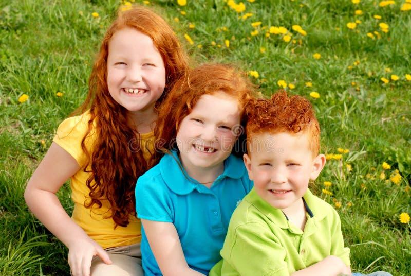 głowiaści portreta czerwieni rodzeństwa obraz stock