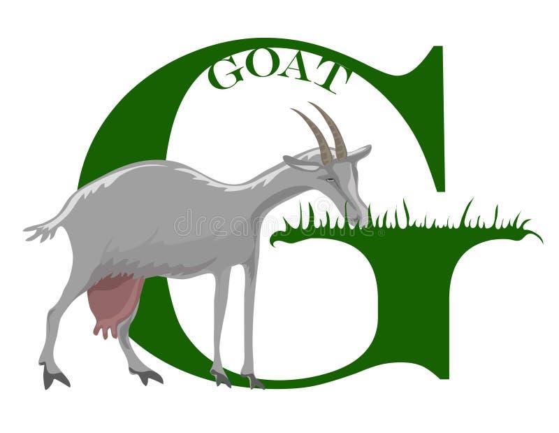 G (cabra) stock de ilustración