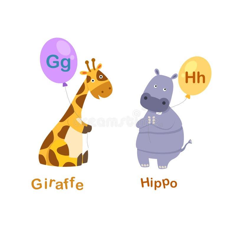 G-giraffa della lettera di alfabeto, H-ippopotamo illustrazione di stock