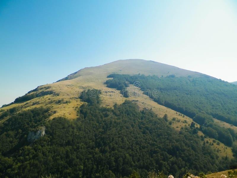 G?ry Galicica park narodowy, Macedonia zdjęcia stock