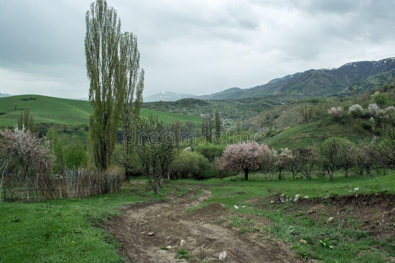 G?ry z chmurami w wio?nie Natura ?Tekeli ? Alatau g?ry kazakhstan zdjęcia royalty free