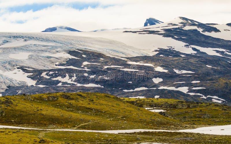 G?ry z lodowym lodowem Drogowy Sognefjellet, Norwegia obraz royalty free