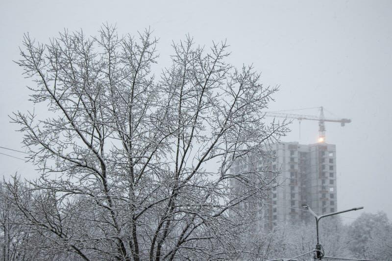 Gałąź drzewa w puszystym śniegu Budowa żuraw w zimie w opad śniegu Zima, spada puszysty śnieg fotografia royalty free