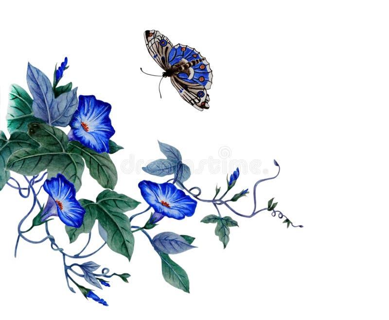 Gałąź kwitnąca ranek chwała ilustracja wektor