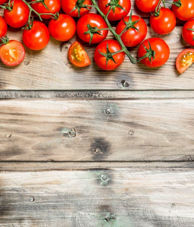 gałęziaści dojrzali pomidory obrazy royalty free