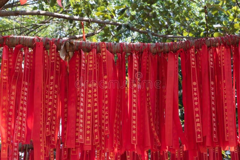 Gałąź Życzy drzewo zdjęcia stock