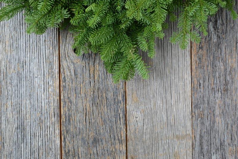 Gałąź na nieociosanym drewnianym tle używać dla boże narodzenie wystroju obraz stock
