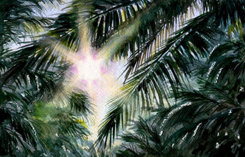 Gałąź palma i słońce ilustracji