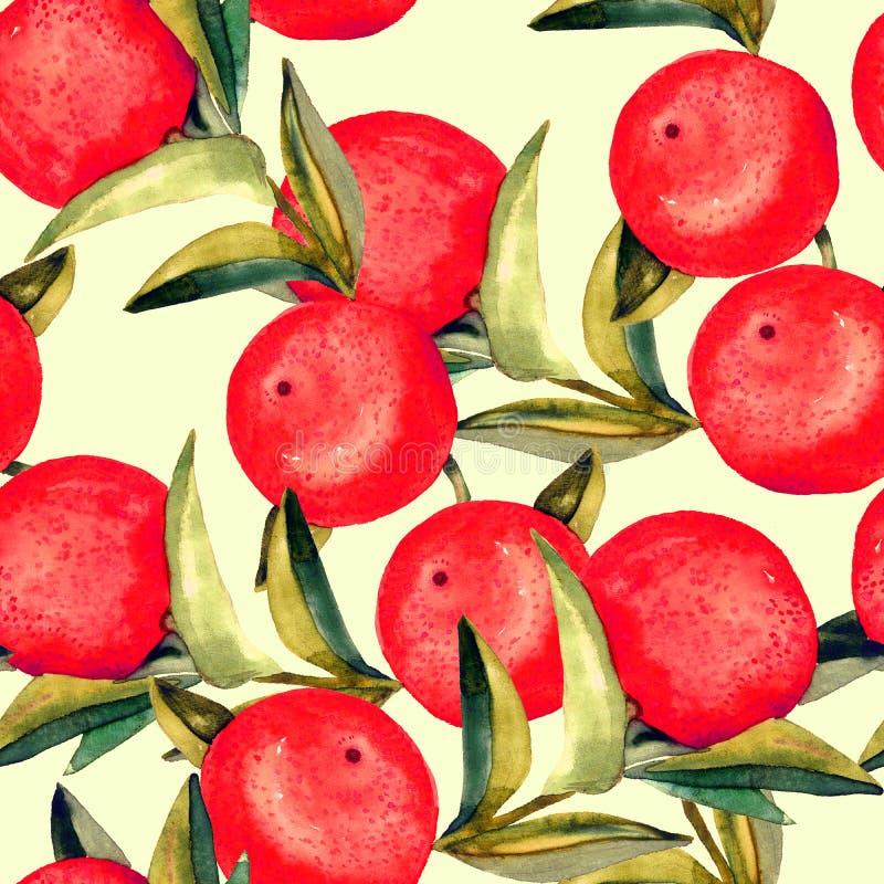 Gałąź z czerwonymi dojrzałymi grapefruits i zieleń liśćmi na miękkim żółtym tle ilustracja wektor